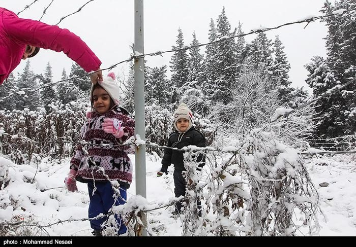 بارش برف در شمال کشور