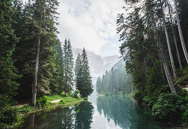 عکس طبیعت بکر