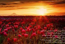 شعر زندگی زیباست چشمی باز کن
