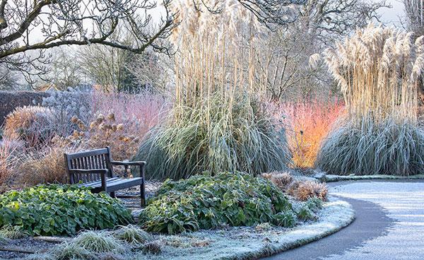 عکس طبیعت زمستانی زیبا