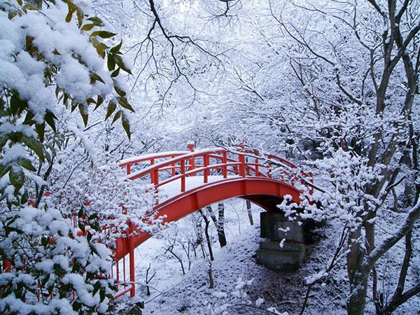 عکس طبیعت زمستانی برای پروفایل