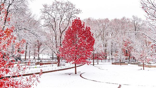 عکس زمستانی دخترانه