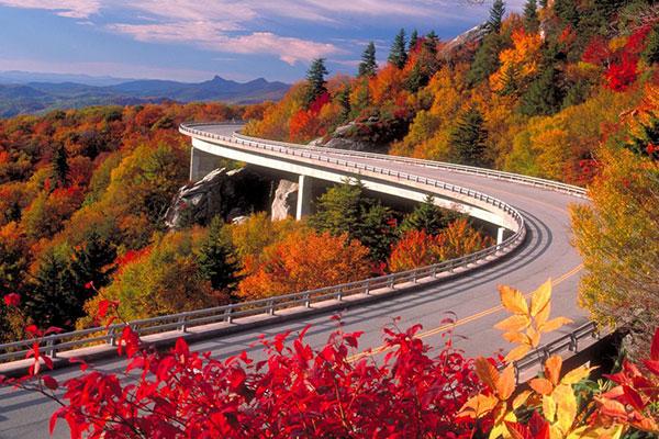 عکس پروفایل جاده پاییزی زیبا