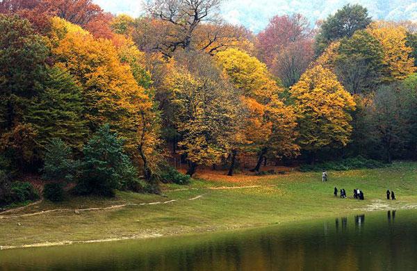 طبیعت پاییزی زیبا