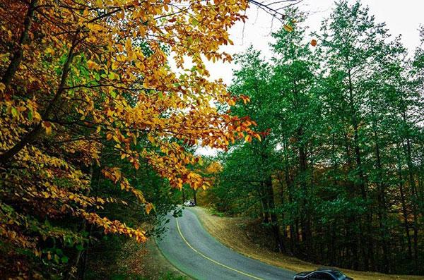 عکس طبیعت پاییزی جاده اسالم به خلخال