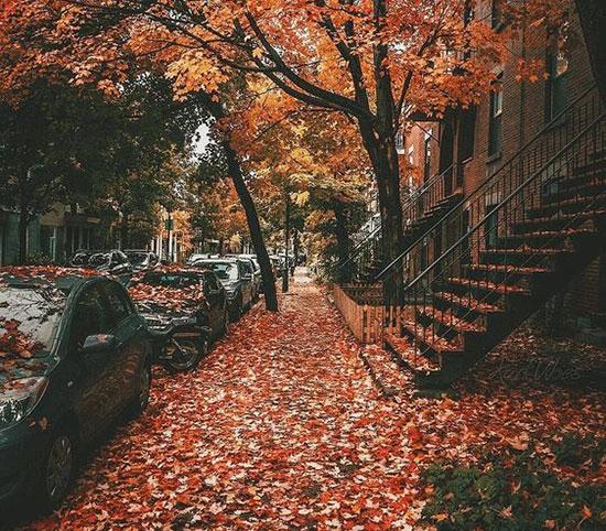 تصاویر زیبای پاییز برای پروفایل شاد