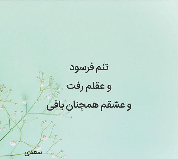 عکس پروفایل اشعار سعدی