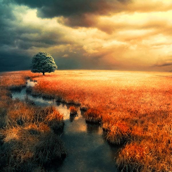 عکس طبیعت رویایی با کیفیت hd