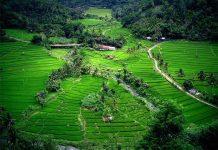 جزایر دیدنی اندونزی