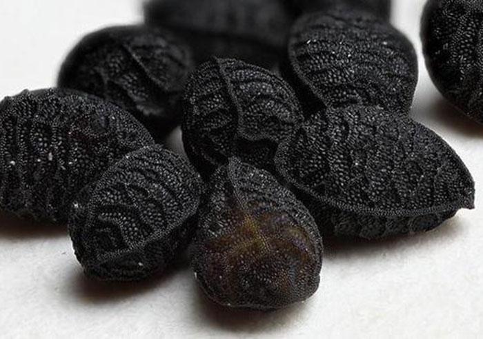 مزایا و خاصیت های روغن سیاه دانه
