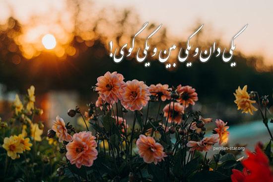 اشعار زیبای جامی