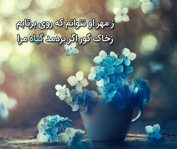 زیباترین اشعار عبید زاکانی