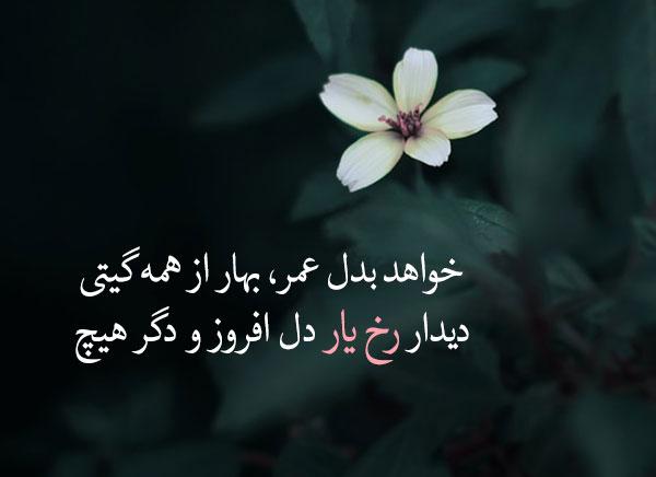زیباترین اشعار ملک الشعرای بهار