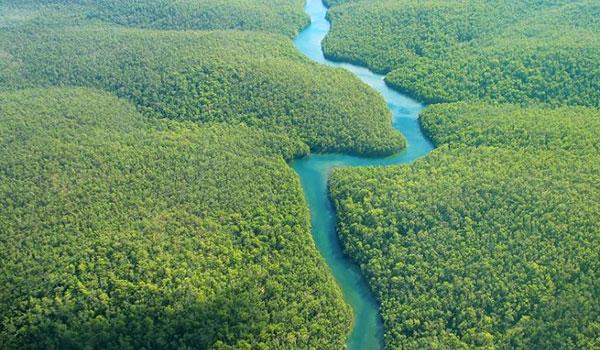 طبیعت بکر رودخانه آمازون