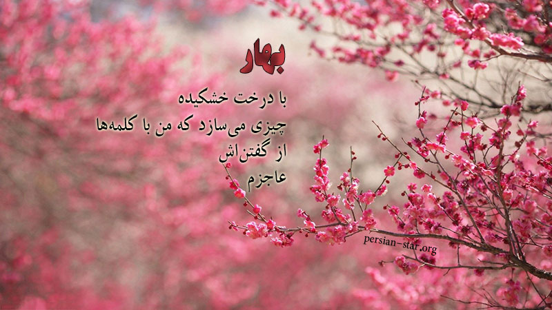 عکس پروفایل طبیعت بهار با متن