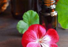 خواص روغن گل شمعدانی