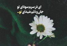 عکس نوشته شعر عطار نیشابوری
