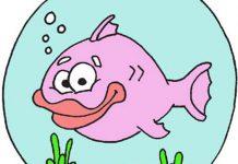 انشا در مورد ماهی در تنگ