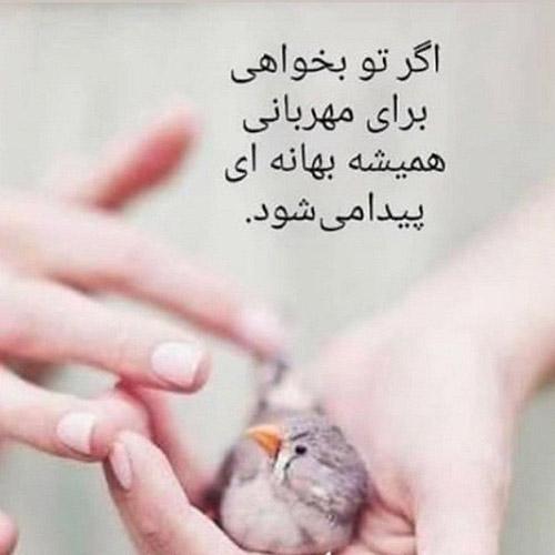 عکس پروفایل مهربانی و انسانیت