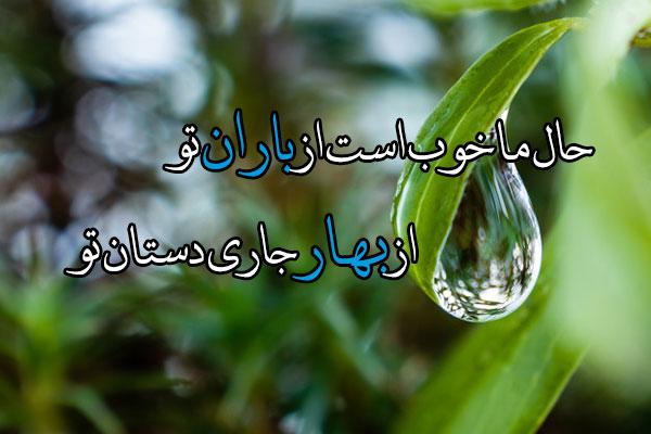 عکس قطره باران روی برگ برای پروفایل