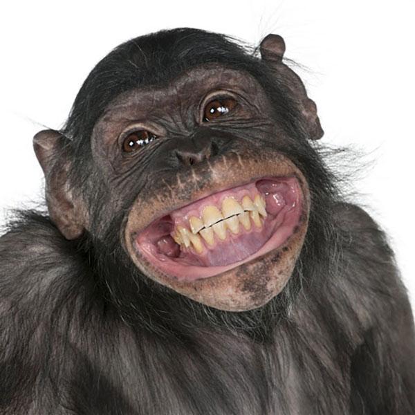 عکس پروفایل خنده دار پسرانه بدون متن