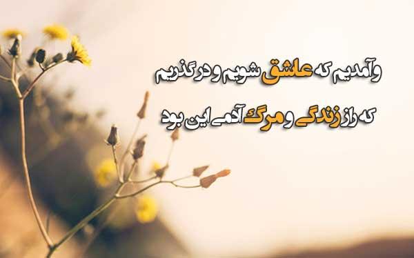 پروفایل شعر حسین منزوی
