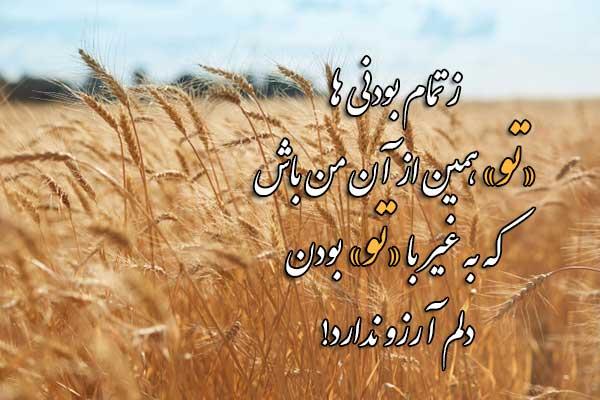 عکس نوشته شعر های حسین منزوی
