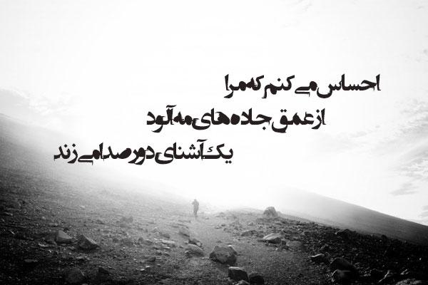 عکس نوشته شعر عاشقانه از قیصر امین پور