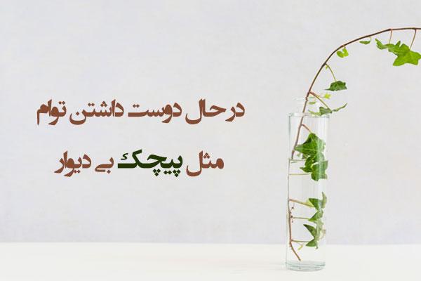 عکس نوشته با اشعار فروغ فرخزاد