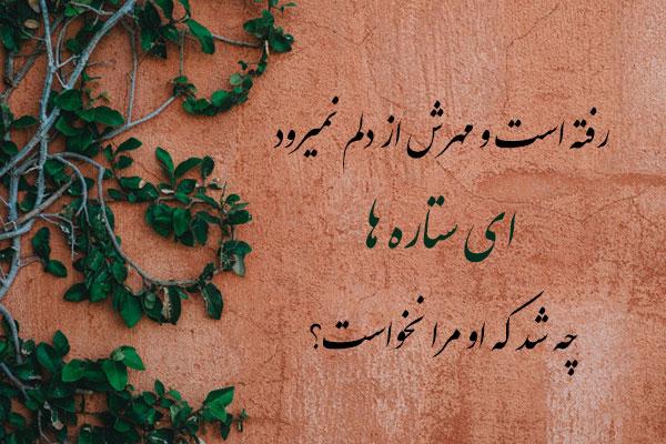 عکس نوشته ی شعر فروغ فرخزاد
