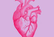 انشا از زبان یک قلب