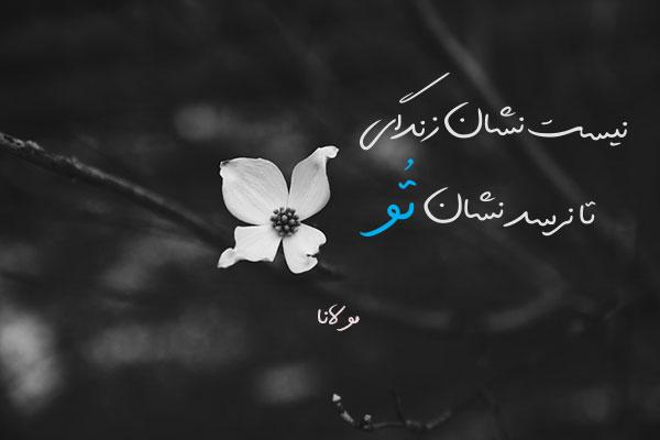 عکس نوشته تک بیتی های مولانا