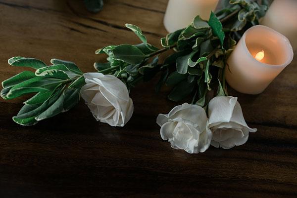 تصاویر زیبای شمع و گل
