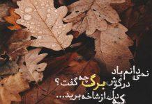 متن های ادبی در مورد برگ های پاییزی