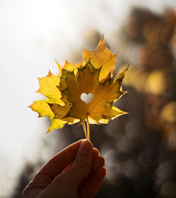 پروفایل عاشقانه پاییزه