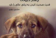 متن های زیبا درباره حیوانات