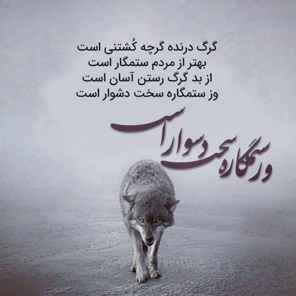گزیده اشعار ناصر خسرو
