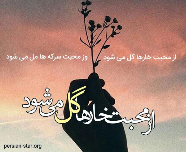 شعر کامل از محبت خارها گل می شود