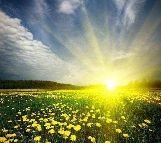 انشا درباره مقایسه مادر و خورشید