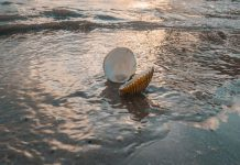 انشا درباره گفتگوی صدف و دریا