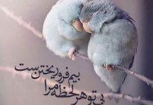 عکس نوشته عشق و دوست داشتن