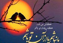 مجموعه اشعار زیبای سلمان هراتی