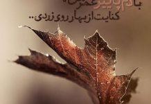 شعر با دم پاییز عمر من، کنایت از بهار روی زردی