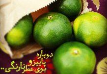 عکس نوشته های پاییز و نارنگی